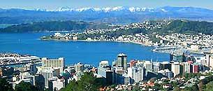 Wellington University